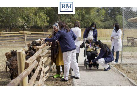 Faire manger les chèvres à Resort Medical Sousse